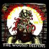 EMPTY SKULLS VOL. 2 THE WOUND DEEPENS -Various Artists LP