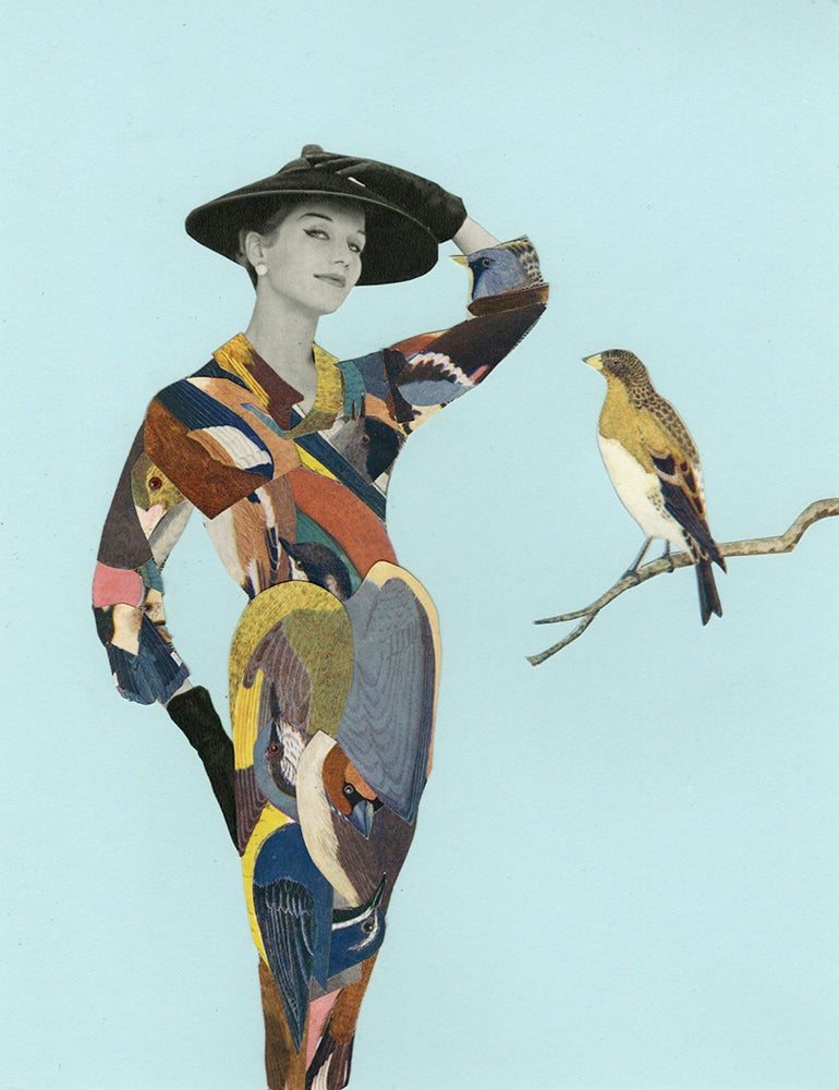 Image of British Birds. Limited edition collage print.