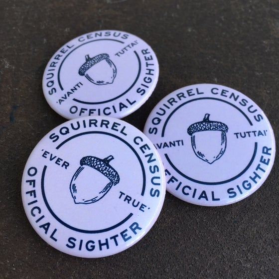 Image of 3-Pack of Pinko Squirrel Census Buttons