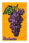 Lilac Remix Print