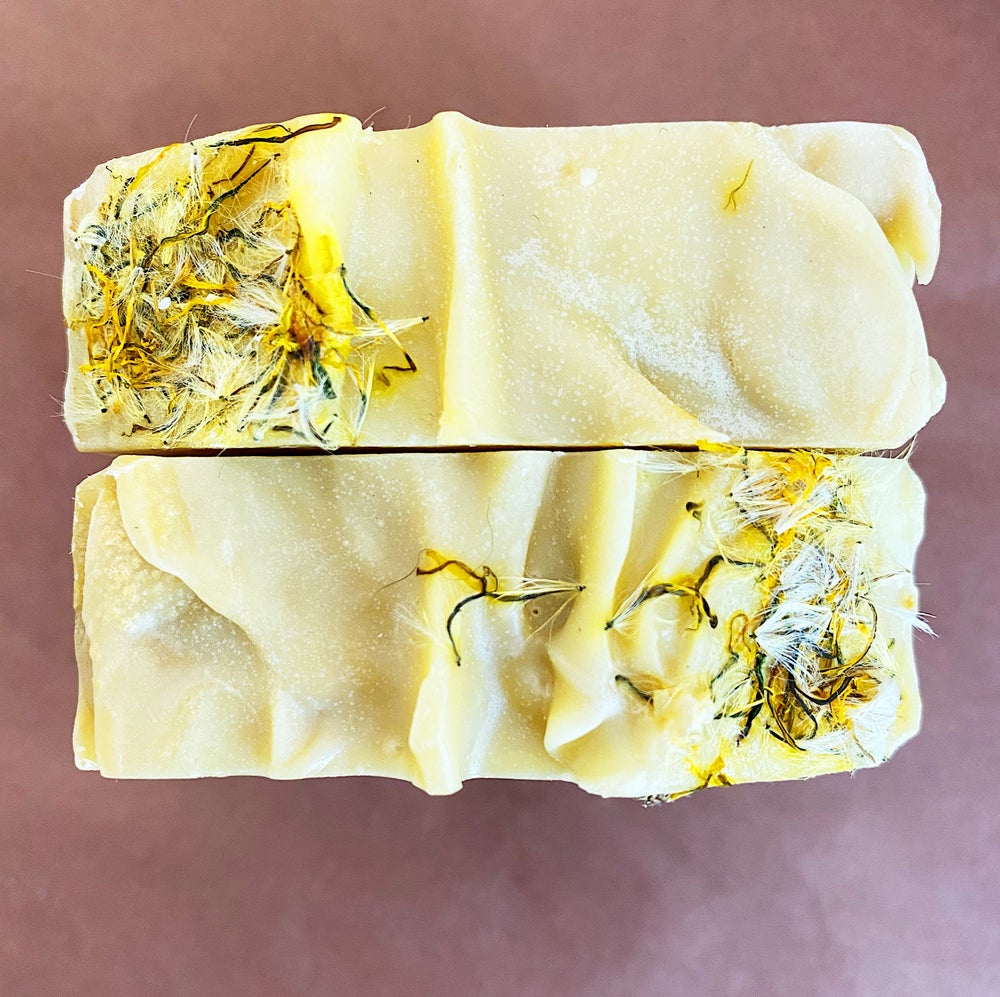 Image of Wildcrafted Spring Dandelion Soap with Lavender, Grapefruit & Petitgrain