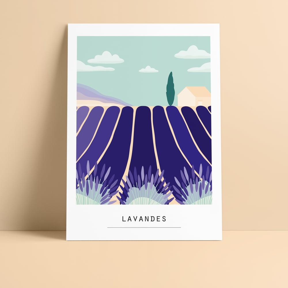 Image of ILLUSTRATION LIMITEE  - coquelicots / lavandes / tournesols