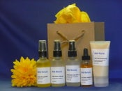 Image of Anti-Aging Skin Care Kit #102
