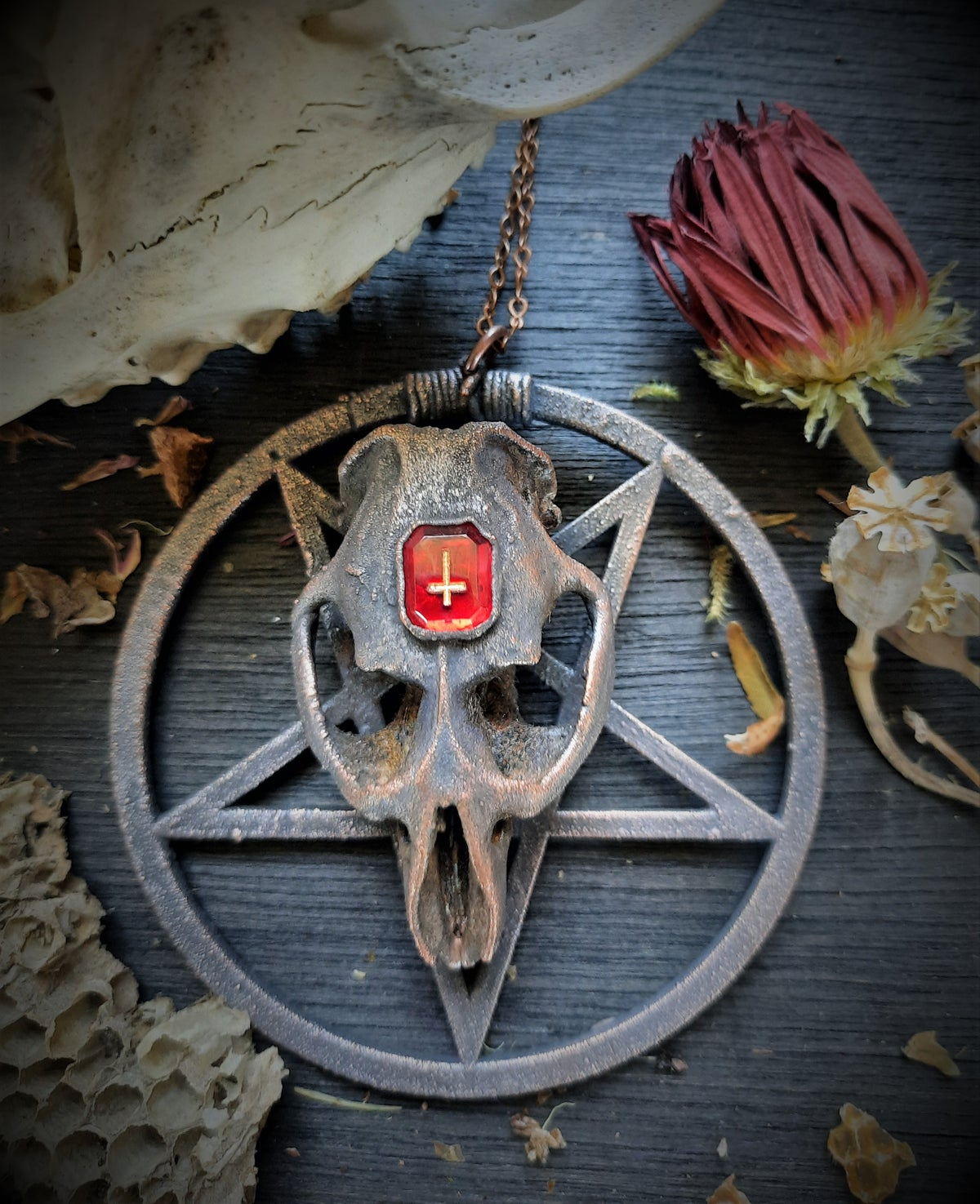 Image of Electroplated Muskrat Skull with Pentagram and Red Inverted Cross