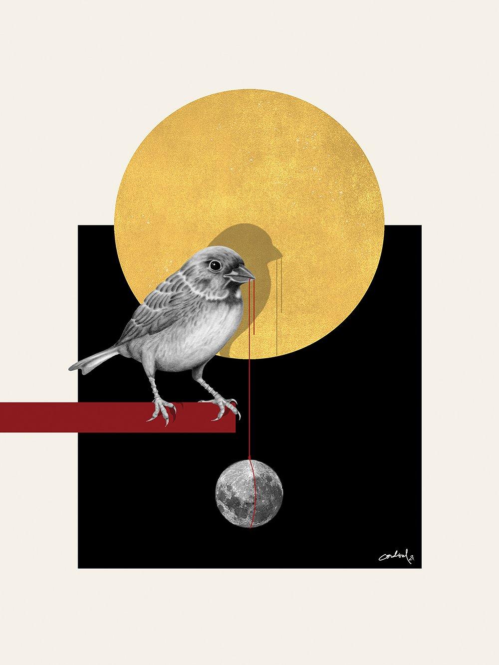 "Image of Fine Art Print ""EARLY BIRD"" (30x40 cm)"