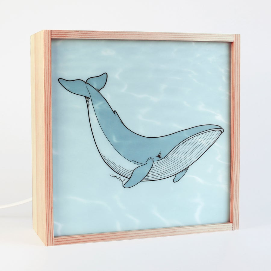 """Image of Leuchten I Lamps """"BLUE WHALE"""" Mod. """"Bubbles"""" and """"Water"""""""