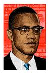 Malcolm X Print