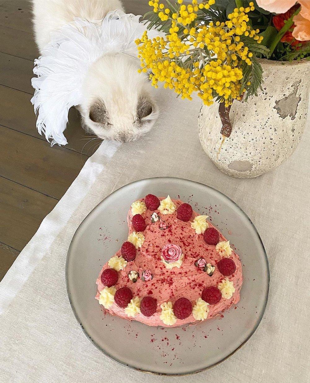 Image of Self Bake Kit - Heart Cake (includes baking pan)