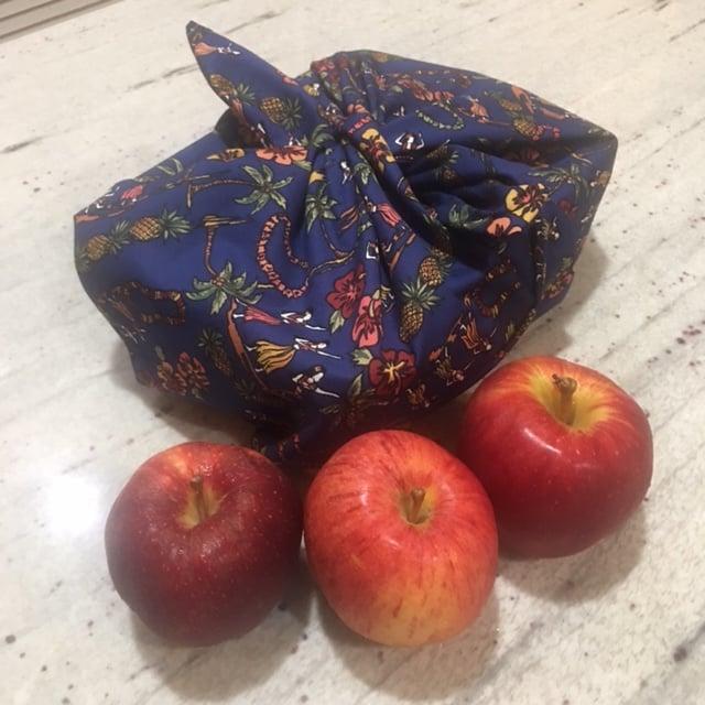 Reusable Azuma Bag,  Bento Bag, Japanese Lunch Box, Furoshiki Bag, Kids Fabric Lunch
