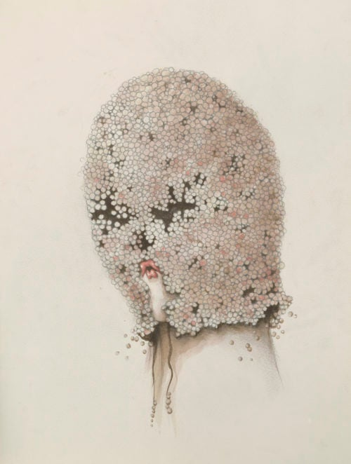 Image of Miss Van - Soft Blindness II