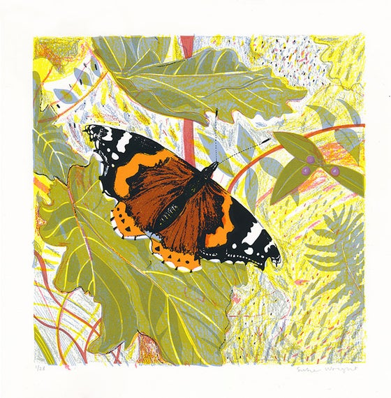Image of Red Admiral screen print