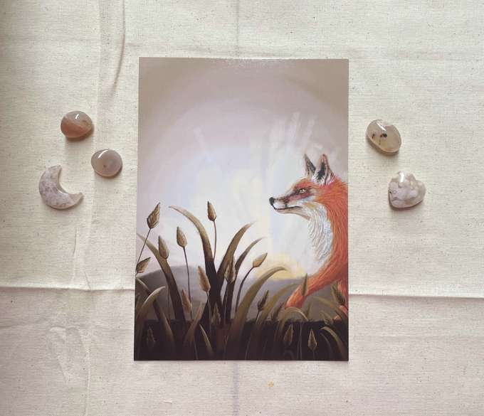 Image of Fox At First Light Print