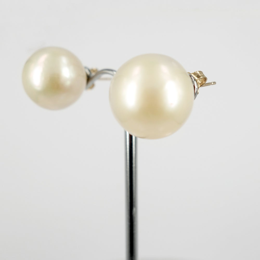 Image of High quality freshwater pearl large stud earrings. CP1126
