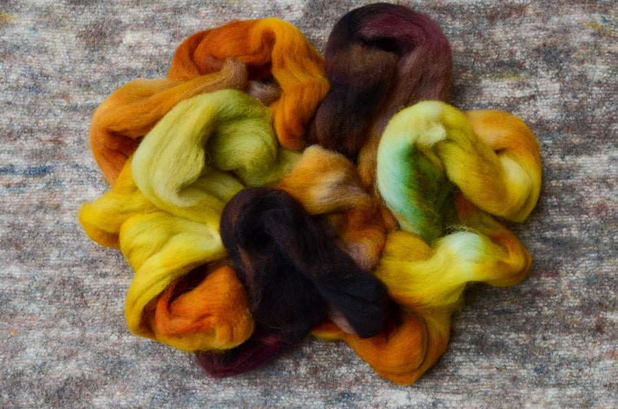"""Image of """"Nibble"""" Hand-dyed Eider Wool Spinning Fiber - 4 oz."""
