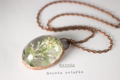Image of Catnip (Nepeta cataria) - Copper Plated Necklace #1