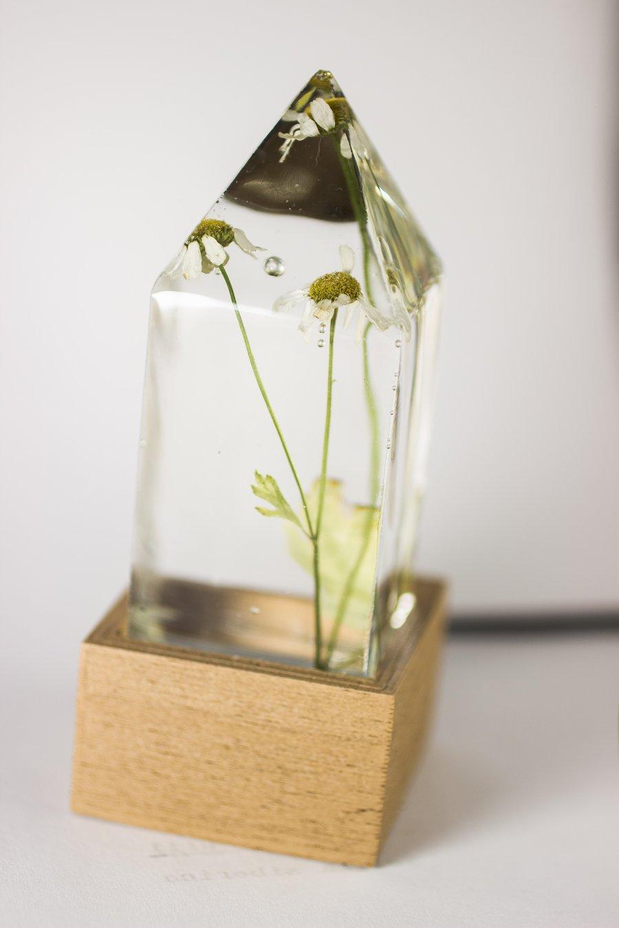Image of Feverfew (Tanacetum parthenium) - Floral Prism Desk Light #4