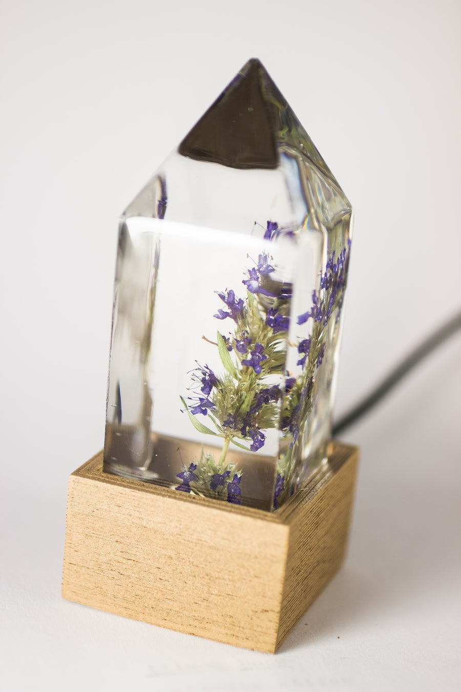 Image of Hyssop (Hyssopus officinalis) - Floral Night-Light #1
