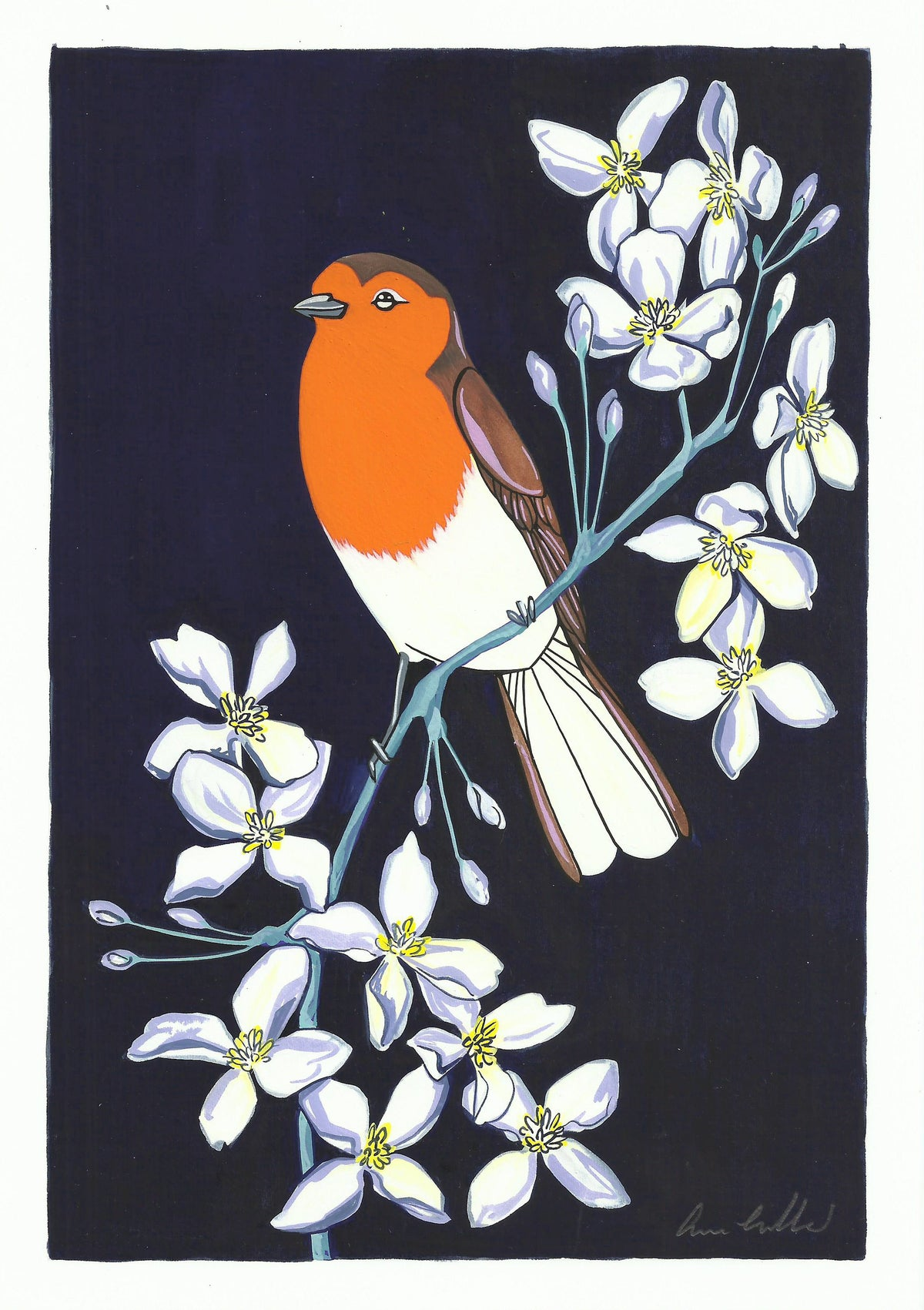 Image of Robin and Clematis