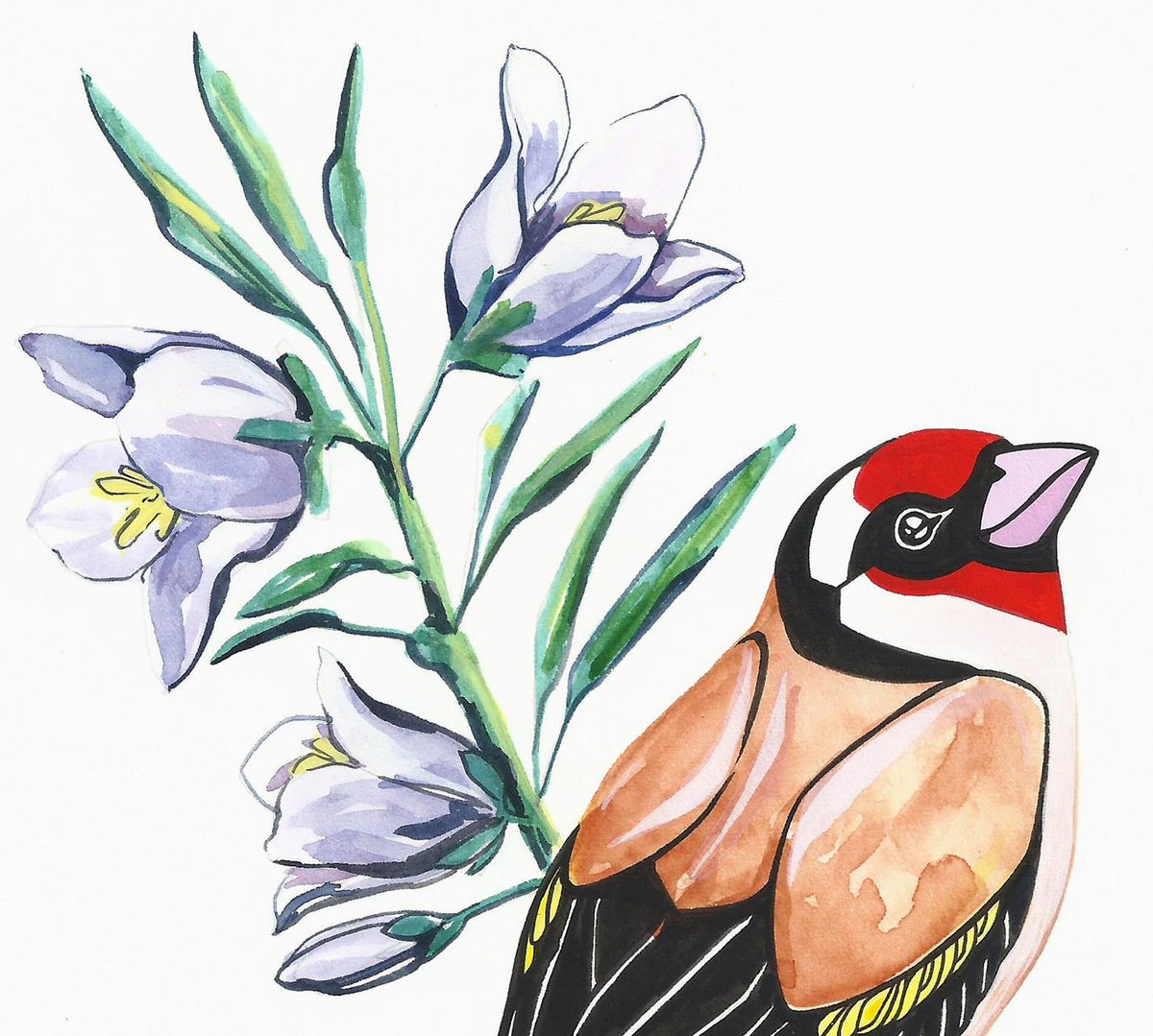Image of Goldfinch and Bellflower