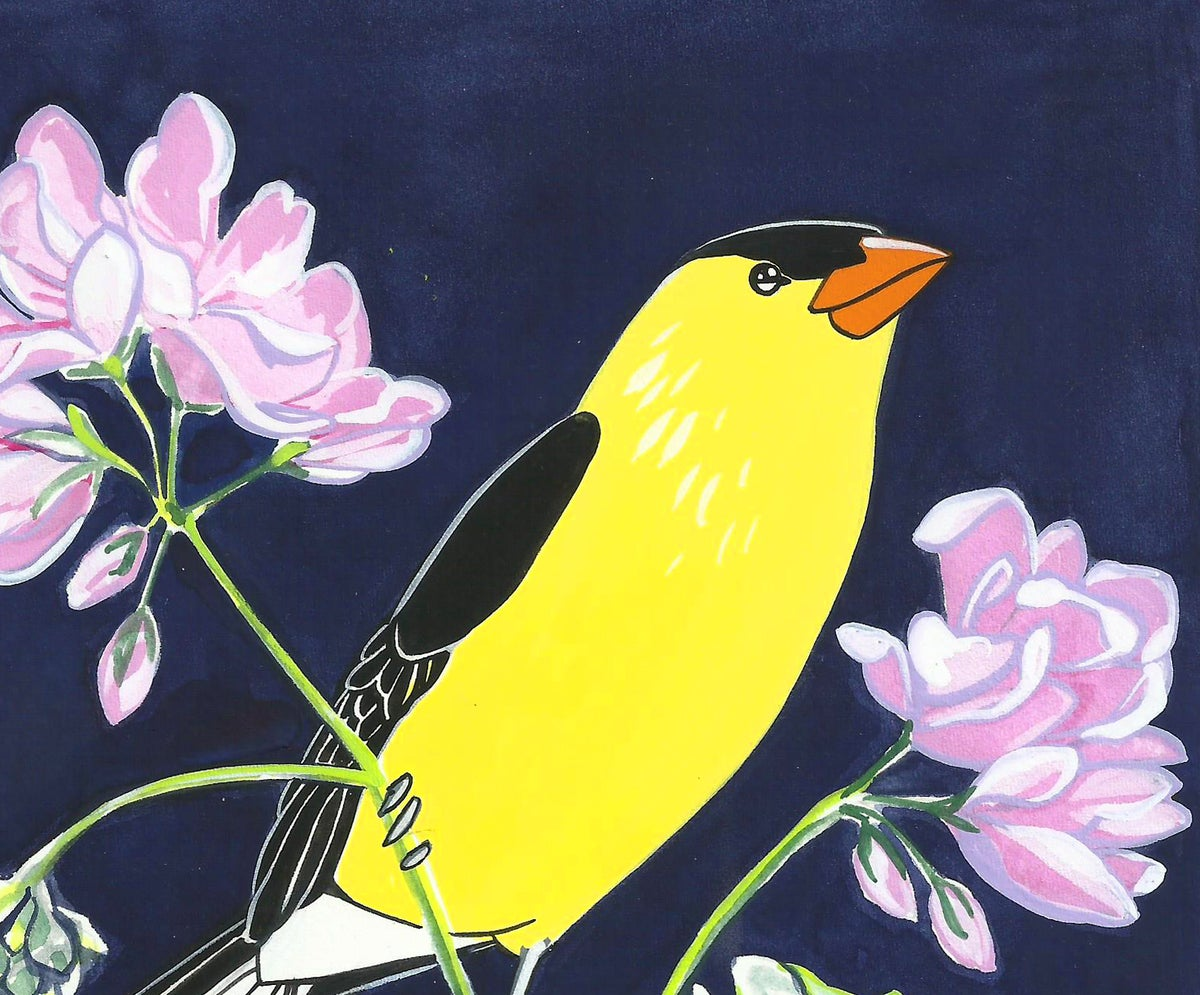 Image of American Goldfinch and Geranium