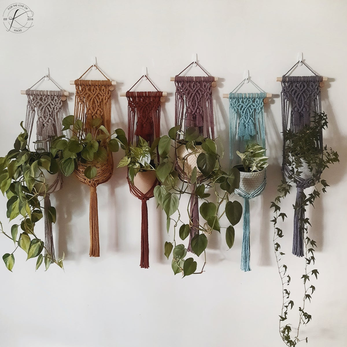 Image of Wall Plant Hanger
