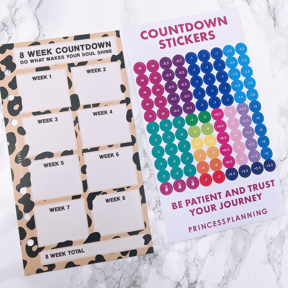 Image of PETITE PLANNER 8 WEEK COUNTDOWN INSERT - DO WHAT MAKES YOUR SOUL SHINE