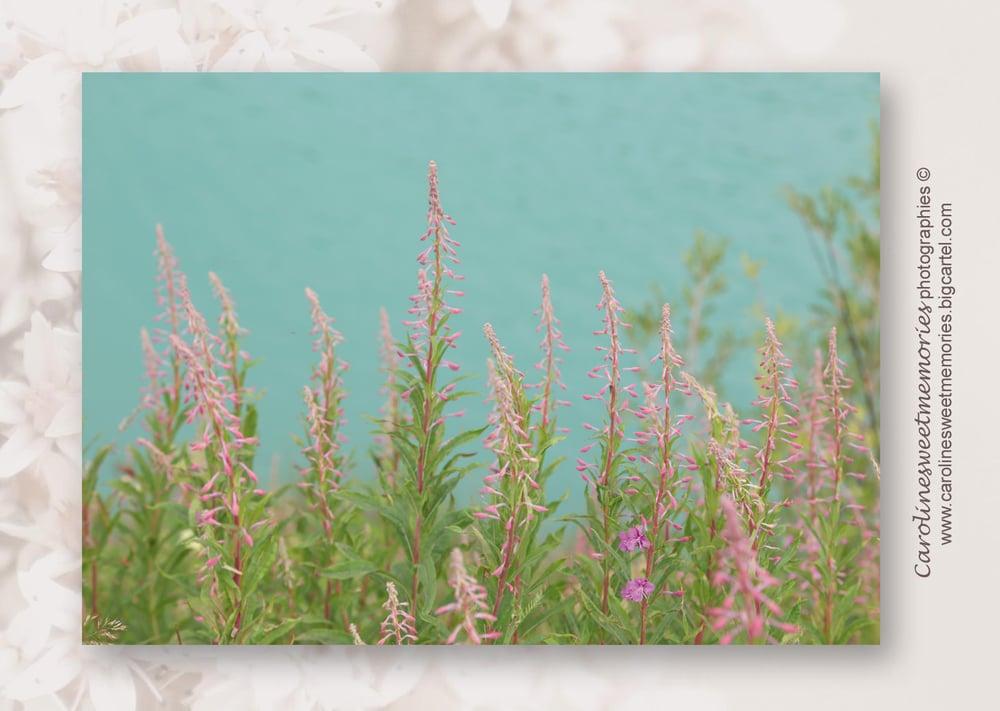 Image of Au bord du lac | carte postale