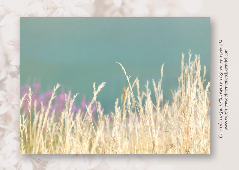 Image of Au bord du lac (2) | carte postale