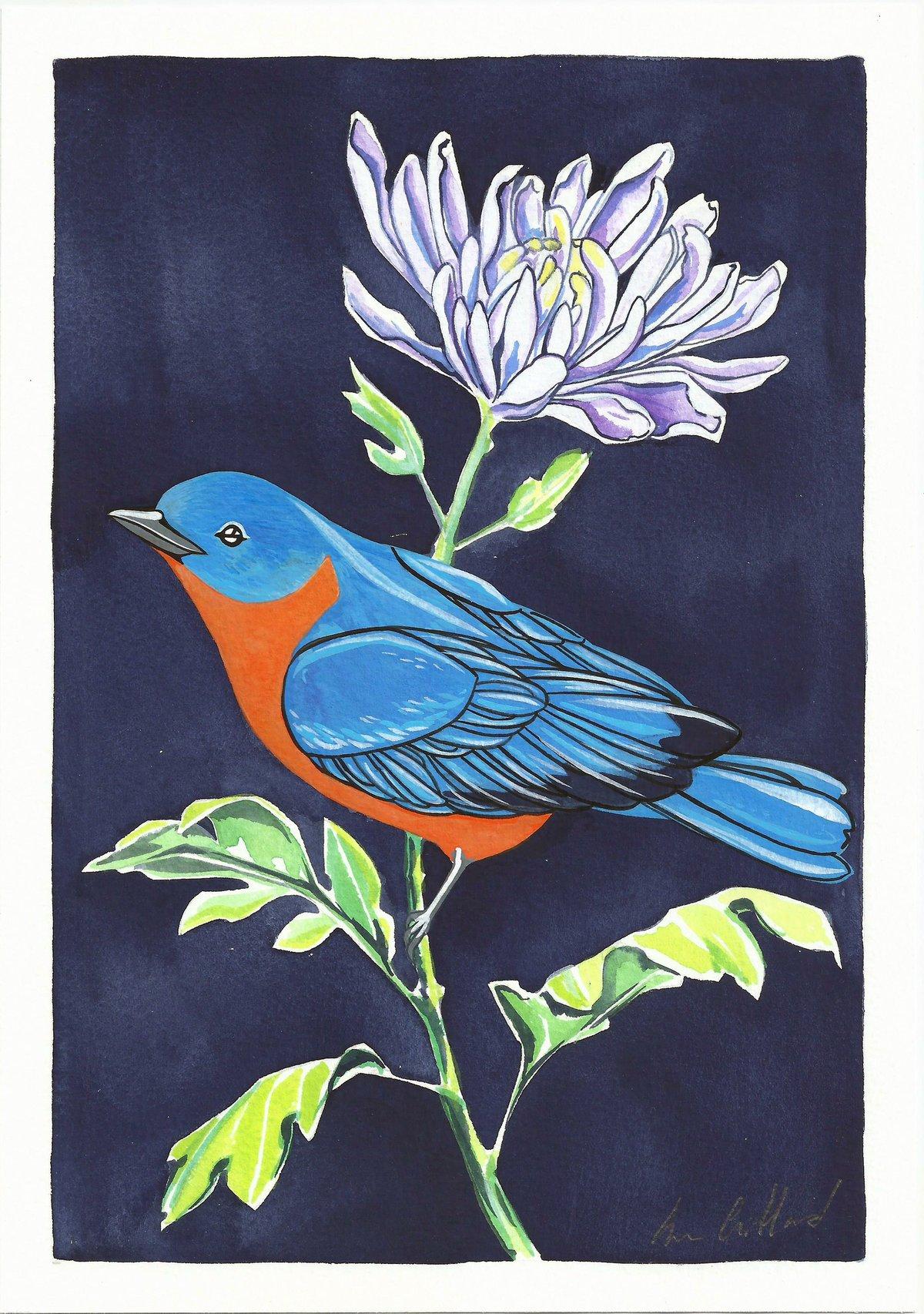 Image of Bluebird and Chrysanthemum
