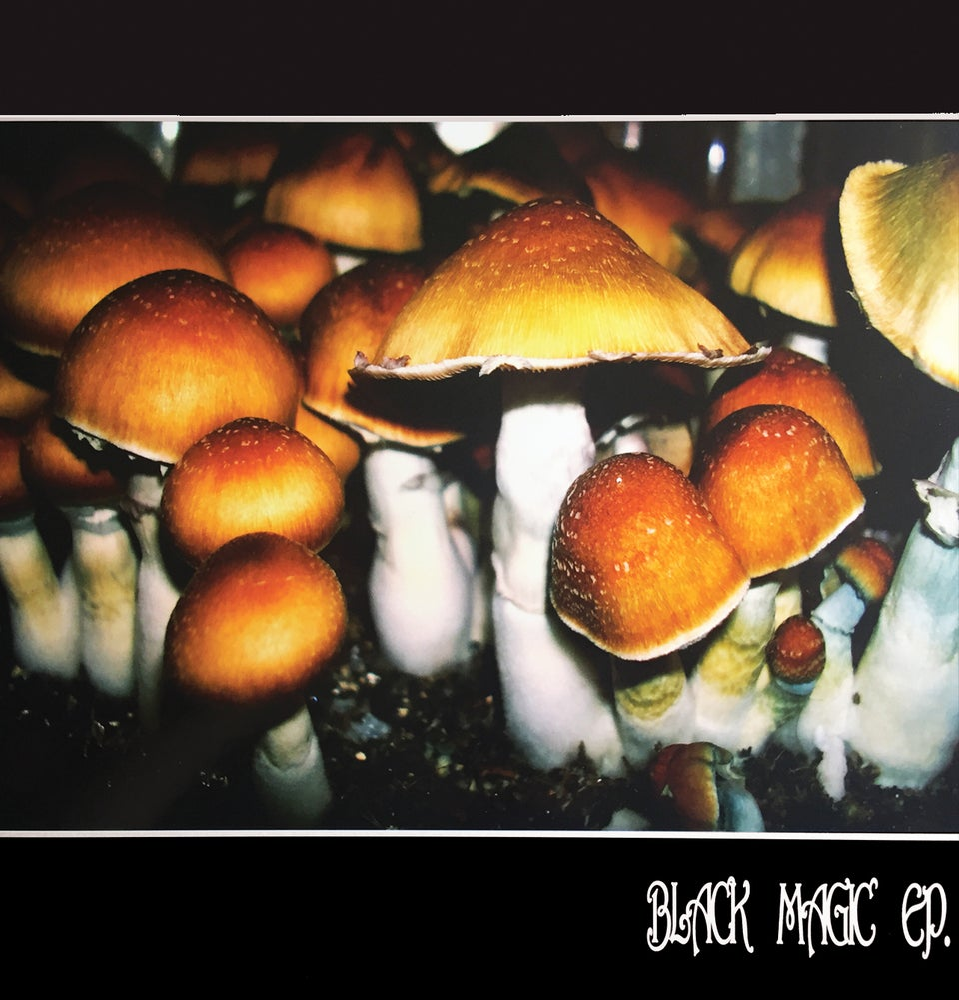"Image of 12"" Vinyl - Leighton Harris - Black Magic EP (LH002)"