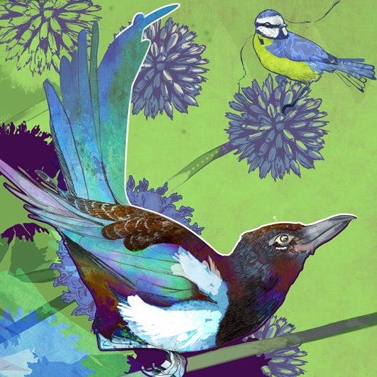 Image of The Magpie and The Bluetit