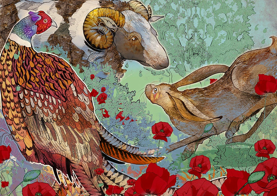 Image of Hare, Jacob, Pheasant.
