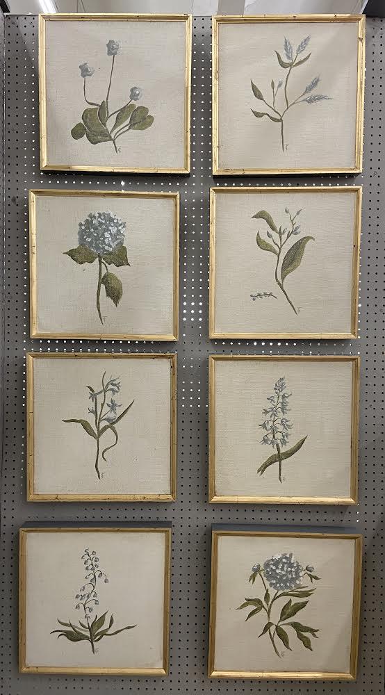 Image of Botanical  6