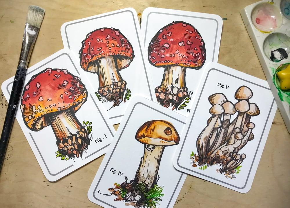 Image of Mushroom Mini Print Collection