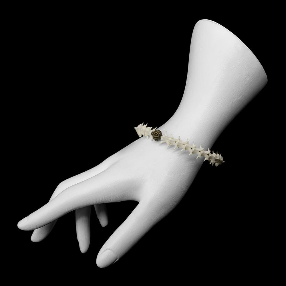 """Image of """"Fahl"""" Snake Vertebrae Bracelet"""