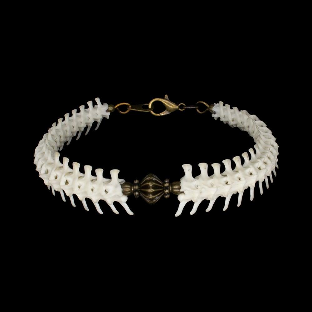 """Image of """"Keda"""" Rattlesnake Vertebrae Bracelet"""