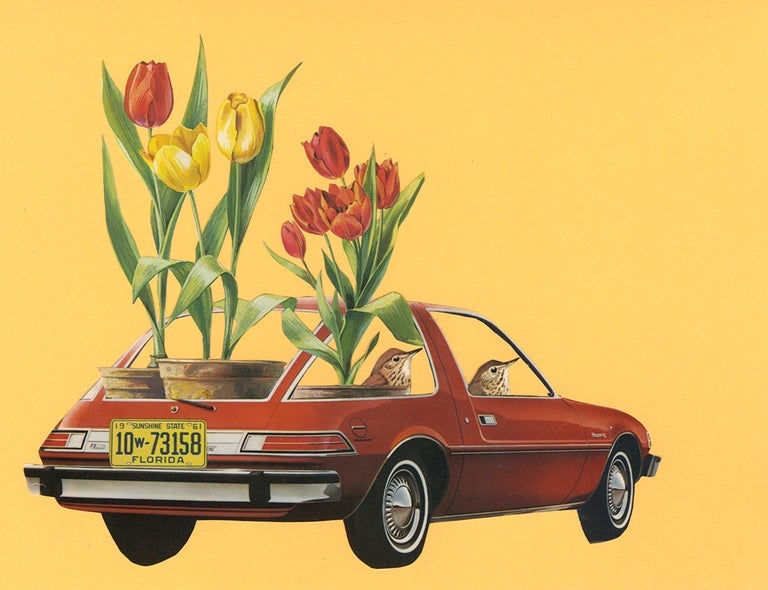 Image of Tulip Mania. Limited edition collage print.