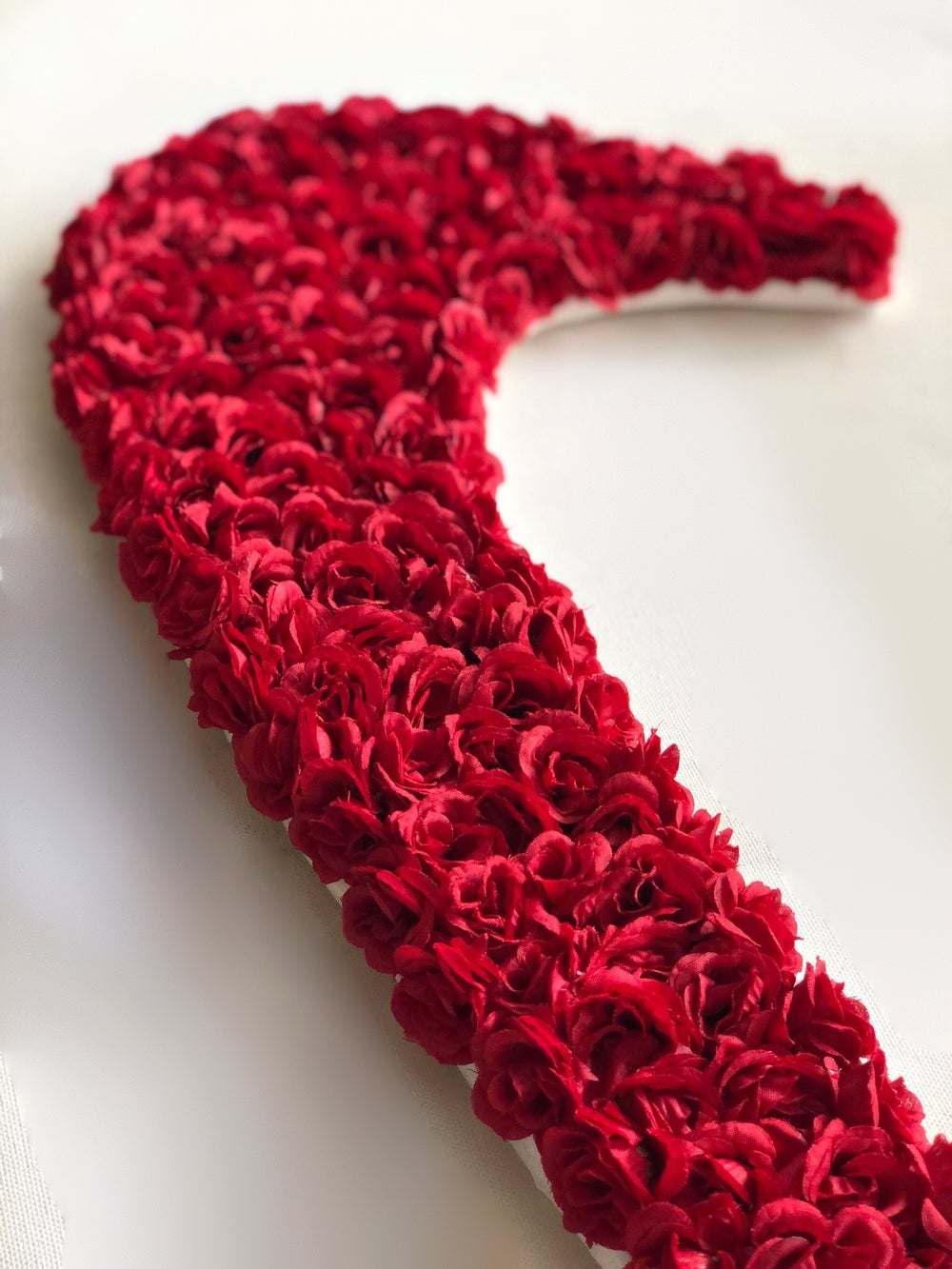 Swoosh in Bloom - Red Roses