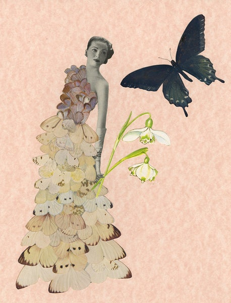 Image of The Butterfly Bride. Original paper collage.