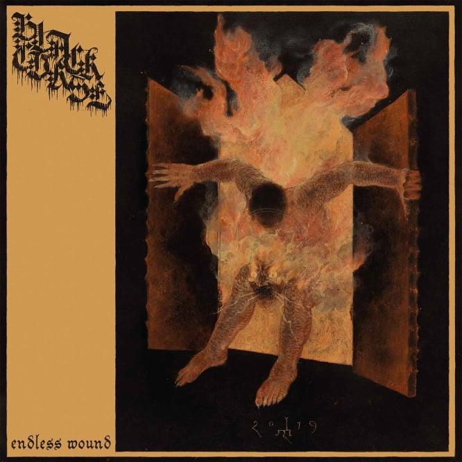 "Image of Black Curse ""Endless Wound"" _ 12"" LP _ Sepulchral Voice"