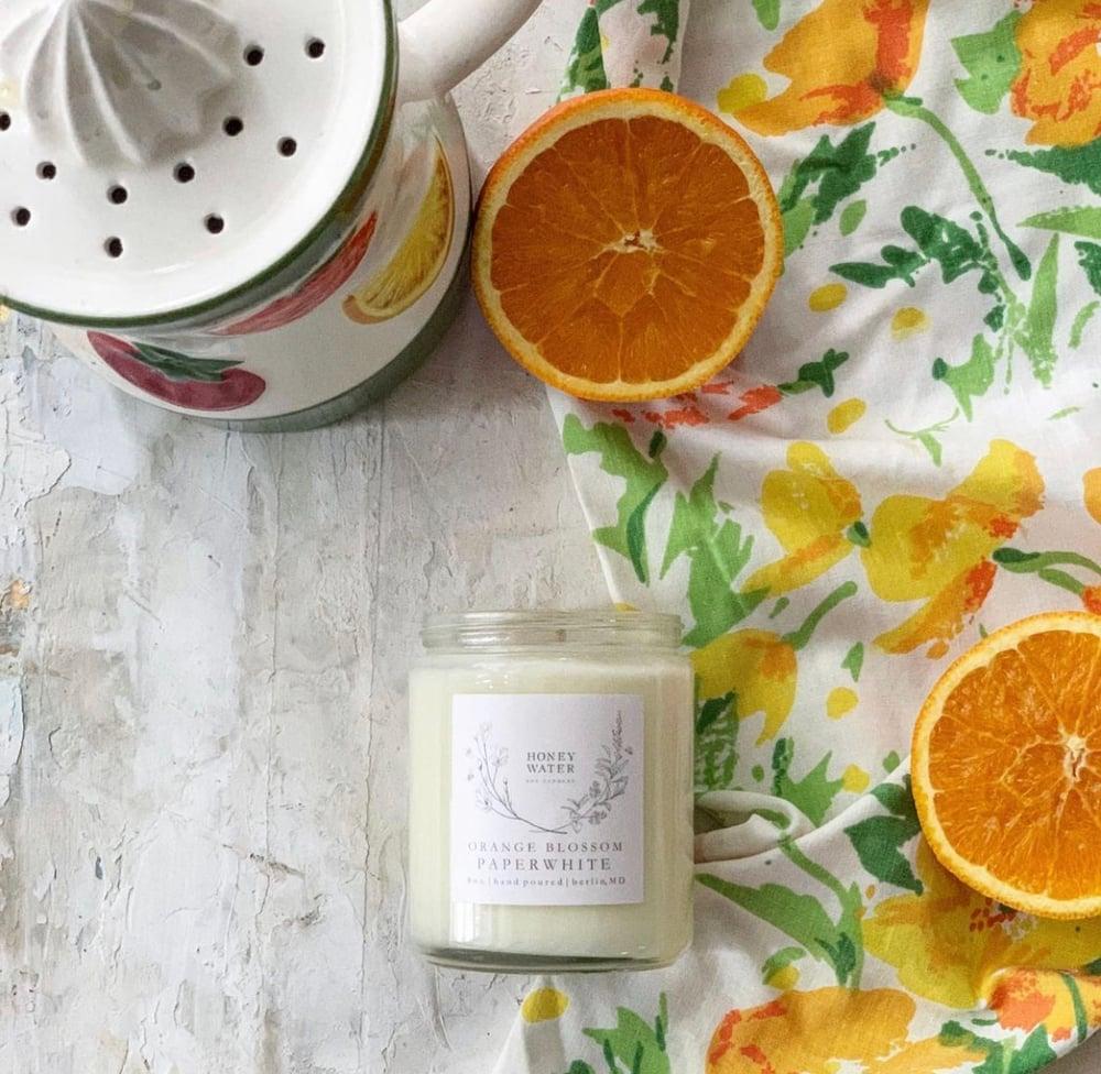 Image of Orange blossom paperwhite