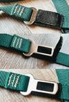 Guardian Leash & Seatbelt