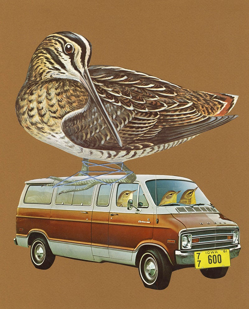 Image of The Great Snipe Hunt of 1975. Original paper collage.