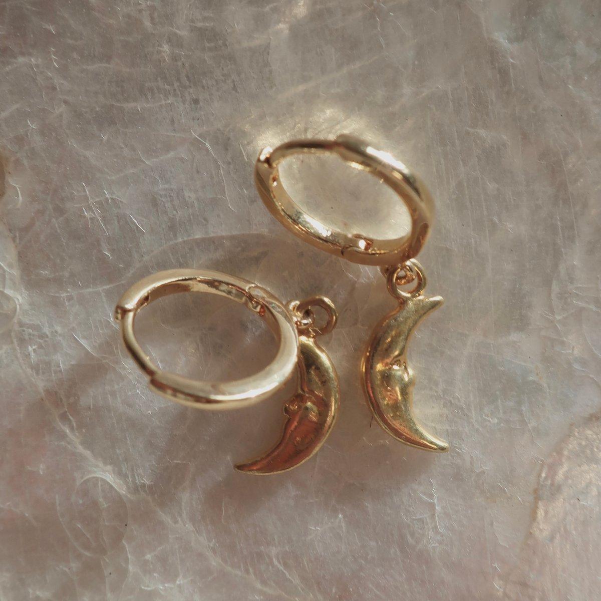 Image of Luna Earrings