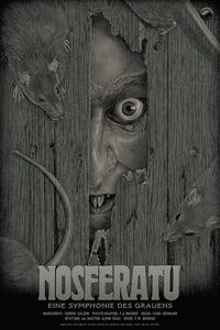 Image of Nosferatu Regular Edition