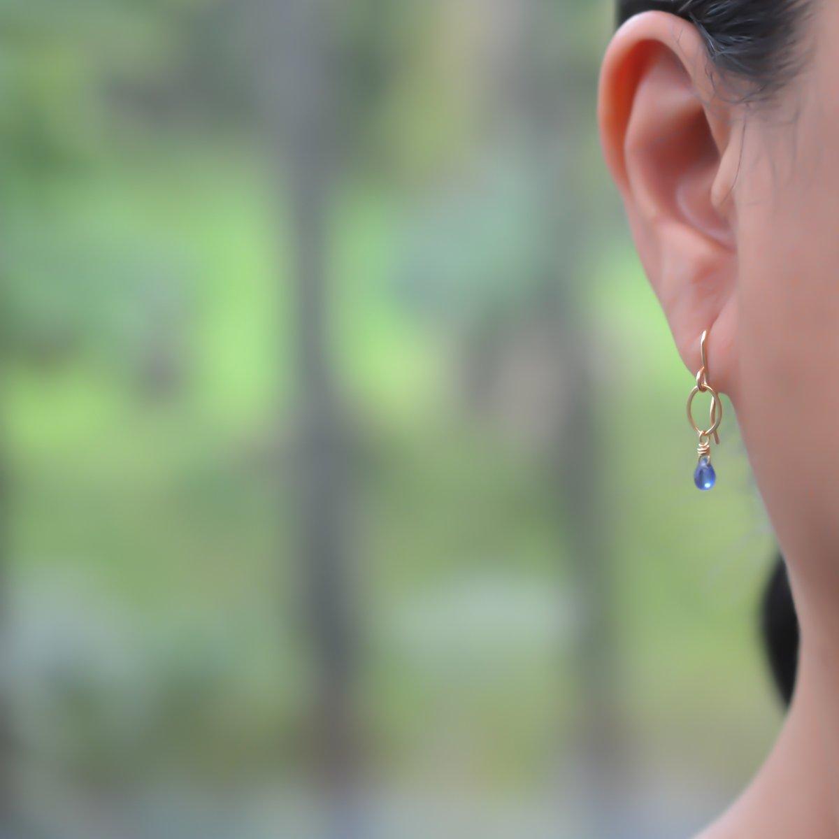 Image of Tiny Kyanite Earrings