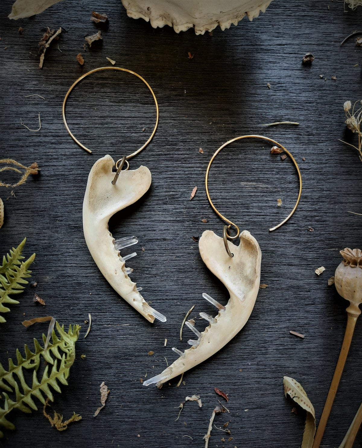Image of Opossum Jaws with Quartz Crystal Earrings