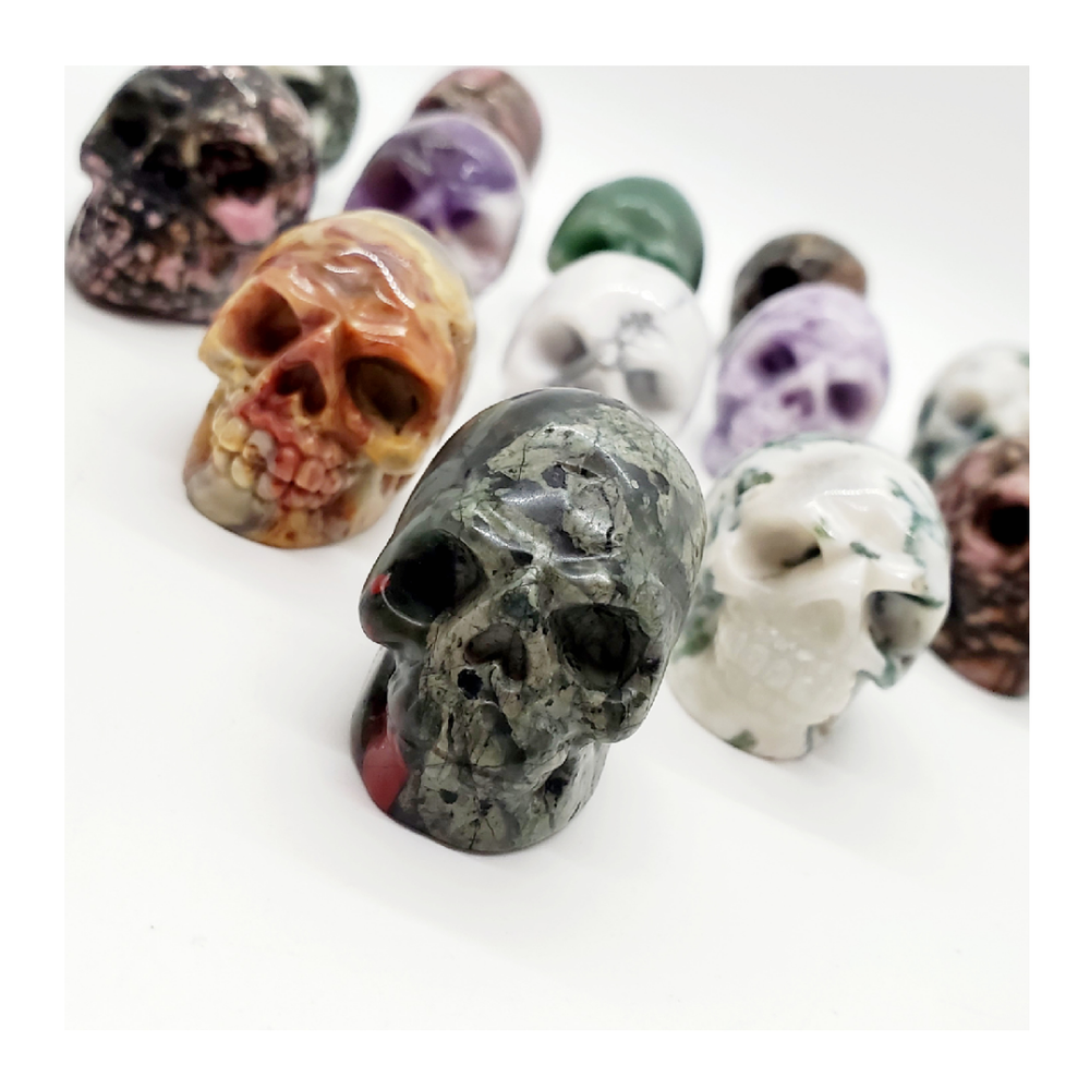 Image of Polished Skulls