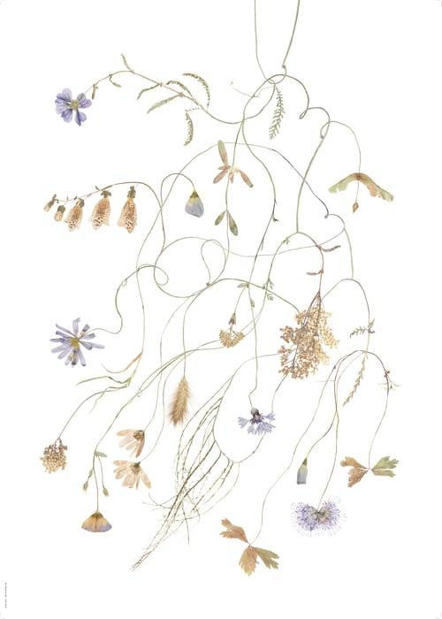 Image of Flower Vane NEW!