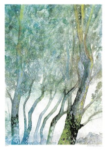 Image of Foggy Forest